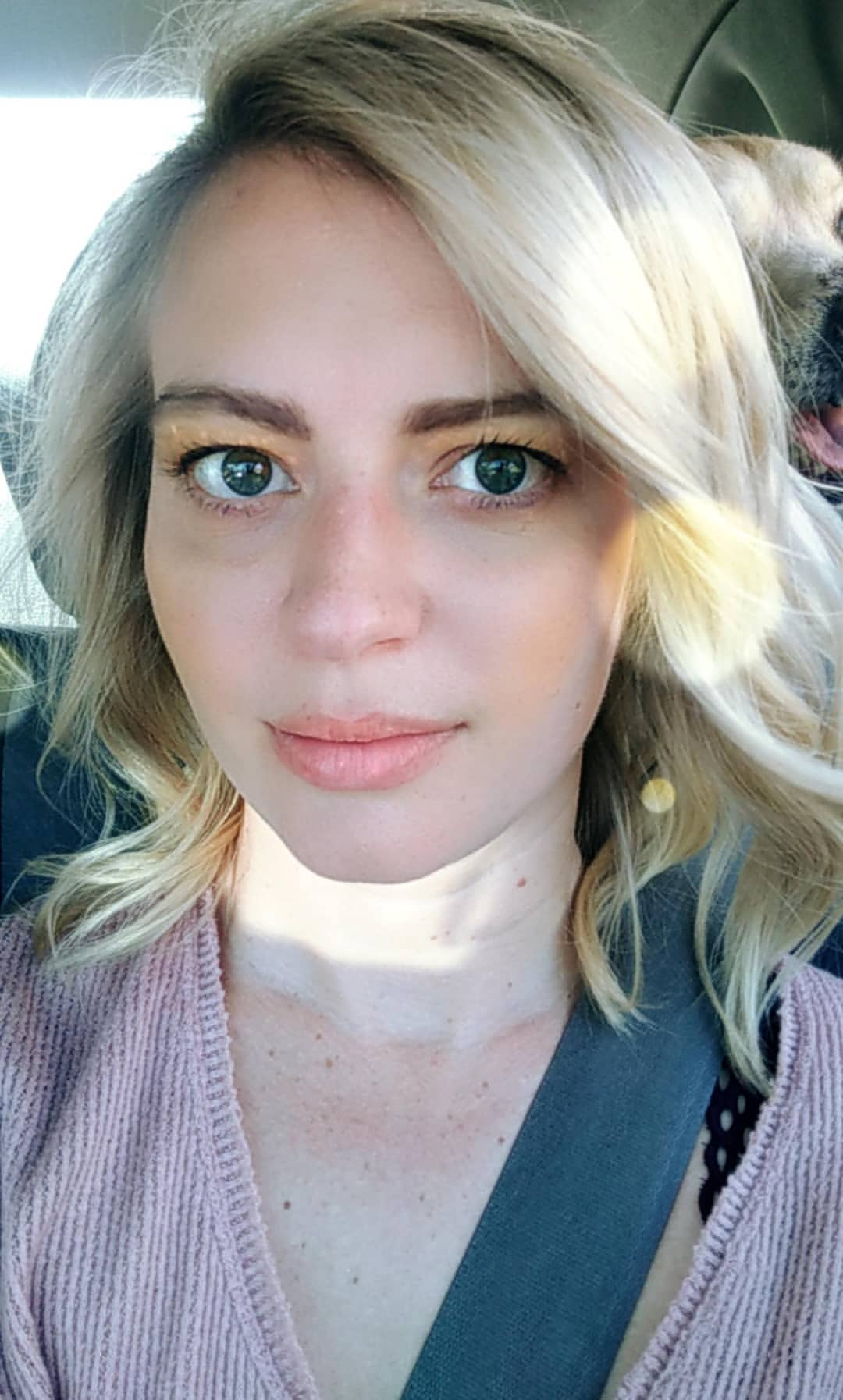 Elyse willems fakes